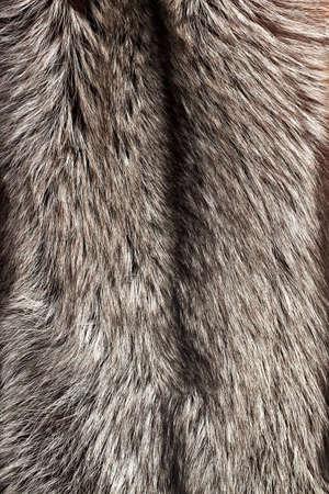 silver fox: Silver fox fur texture as vertical background