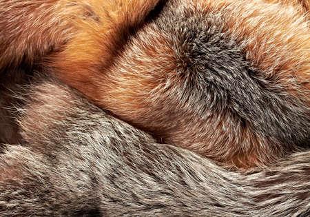 combined: Fondo horizontal de pieles de zorro plateado y rojo combinado