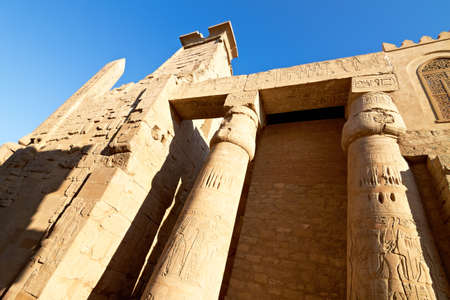 Architectural detail of ancient Luxor Temple in Egypt at dawn Stock Photo - 11567000