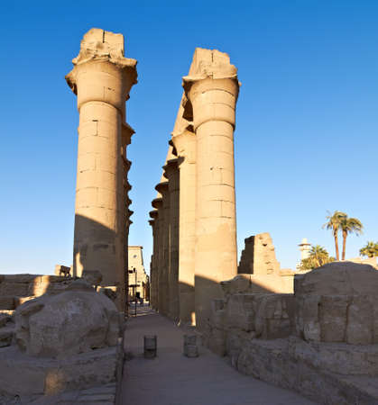 Colonnade of the Luxor temple in Egypt at dawn Stock Photo - 11566964