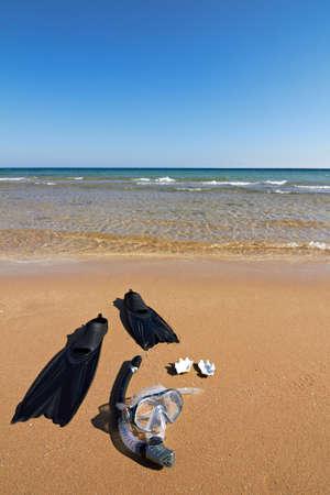 snorkle: Snorkeling set and seashells lying on wet sand, vertical orientation Stock Photo