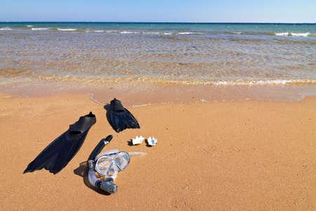 Snorkeling set and seashells lying on wet sand, horizontal orientation photo