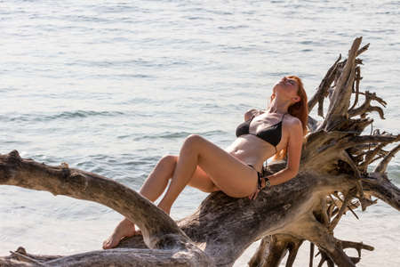 Young woman in bikini posing on branchy log in water photo