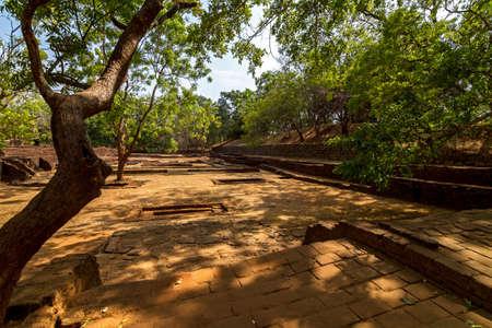 Gardens of Sigiriya Lion photo