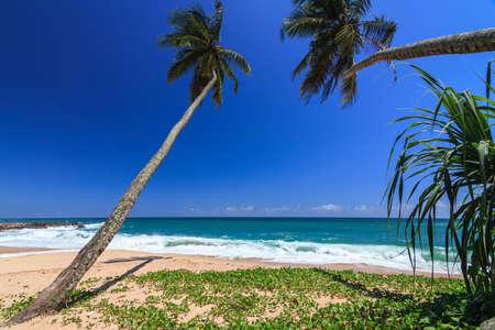 Gorgeous Beach at morning, Tangalle, Sri Lanka photo