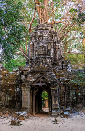 Ancient stone door and tree roots in ruins of buddhist khmer temple near Siem Reap, Cambodia Stock Photo