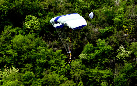 Skydiver on white and blue parachute paragliding in the forest Stock Photo