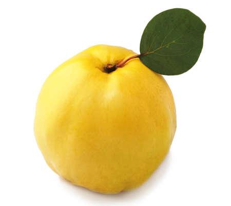 membrillo: Dulce de membrillo con licencia en blanco