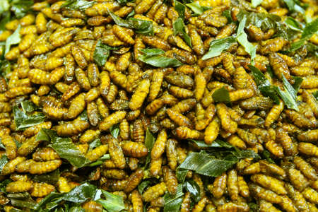 Fried larvae - asian delicacies   photo
