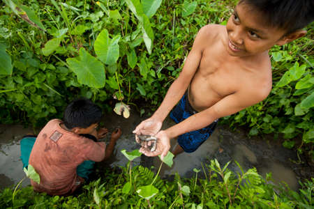 BALI, INDONESIA - MARCH 31: Unidentified poor children catch small fish in a ditch near a rice field on March 31, 2012 on Bali, Indonesia. Stock Photo - 12943589
