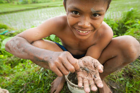 rice field: BALI, INDONESIA - MARCH 31: Unidentified poor children catch small fish in a ditch near a rice field on March 31, 2012 on Bali, Indonesia.