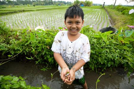 bambini poveri: BALI, INDONESIA - 31 marzo: non identificati bambini poveri catturare piccoli pesci in un fosso vicino a un campo di riso in data 31 marzo 2012 su Bali, Indonesia.
