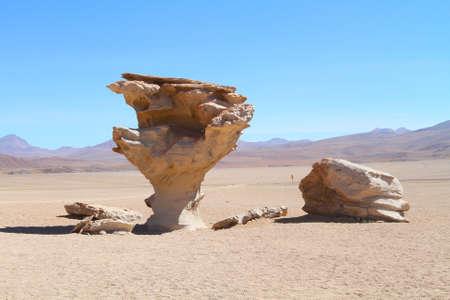 arbol: Arbol de Piedra - La formaci�n de c�lculos de rock en Bolivia Foto de archivo