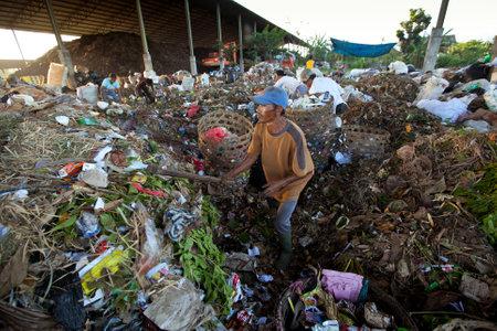 Bali, Indonesia - 11 de abril: La gente pobre de la isla de Java que trabajan en una recolecci�n de residuos en el vertedero el 11 de abril de 2012 en Bali, Indonesia. Bali produce diariamente 10.000 metros c�bicos de residuos.