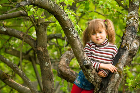 Funny lovely little girl posing sitting on a tree in the garden. photo