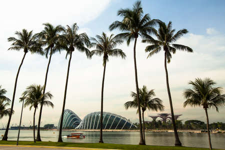 dynamically: SINGAPORE - APRIL 15: A view of city in Marina Bay business district on April 15, 2012 on Singapore. Asian financial center, the city state is one of the most dynamically developing countries in the world.