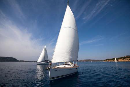yacht race: Vela regata
