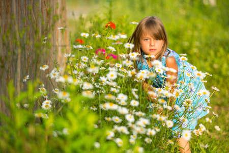 girlie: Charming little girl among yellow wildflowers Stock Photo