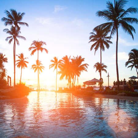 trees  summer: Hermosa puesta de sol en un resort de playa en las zonas tropicales.