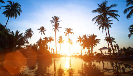 tropics: Beach in the tropics, beautiful sunset. Stock Photo