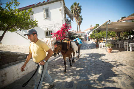 HYDRA, GREECE - MAY 7, 2014: Unidentified man leads a donkey at the Greek island, Hydra. They are the only means of transport on the island, no cars are allowed.