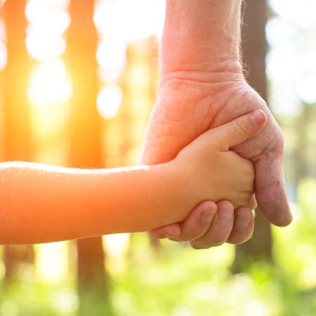 Close-up hands, an adult holding a child's hand, nature and sunset in background. Stockfoto