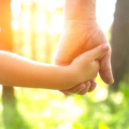 Adult holding a childs hand, close-up hands, nature in background. Stock Photo