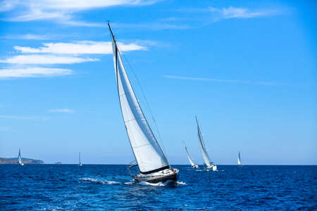 sailing: Sailboats in sailing regatta. Sailing. Outdoor lifestyle. Luxury yachts.