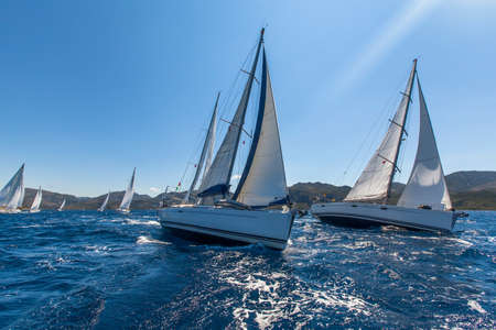 Sailing yacht race. Sailing ships yachts with white sails in the open sea.