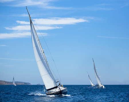 Sail boats: Boats in sailing regatta. Yachting. Luxury yachts.