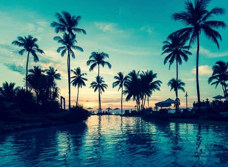 palm: Soft twilight of the amazing tropical marine beach.