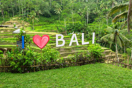 tegalalang: Inscription I Love Bali on the background of green rice terraces. Stock Photo