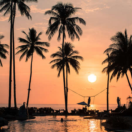 shore: Blood-red sunset on tropical shore with silhouettes of palm trees. Stock Photo