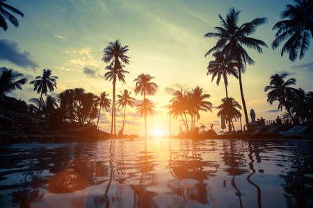 tropics: Beautiful sunset at a beach in tropics.