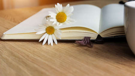 disclosed: Flyleaf disclosed notebook, flowers, coffee - close up.