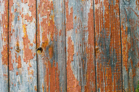 Peeling Paint On Old Wooden Rustic Material The Wall Wood Texture Backgrounds Stock