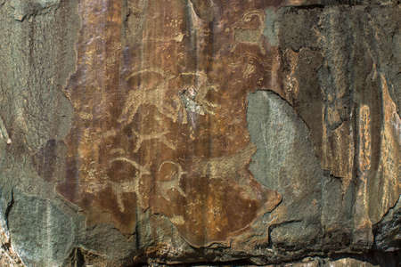 Petroglyphs of Altay. Ancient rock paintings in the Altai Mountains.