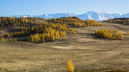 Snow Mountain, Altai mountains, Chuya ridge, Russia. Stock Photo