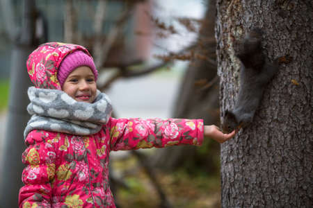 Little girl with hand feeding a squirrel in the Park. Stock Photo