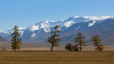 View of the mountain North-Chuya ridge of Altai Republic, Russia.