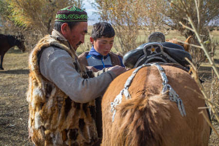 BAYAN-OLGII, MONGOLIA - SEP 28, 2017: Kazakh Berkutchi (Eagle hunters) do saddles horse. In Bayan-Olgii Province is populated to 88,7% by Kazakhs.