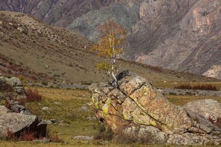 Kalbak-Tash in Altai mountains, Russia. Stock Photo