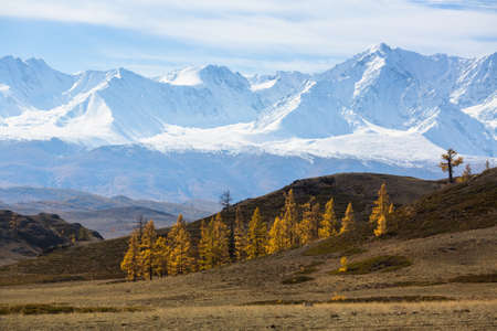Snowy peaks in Chuya ridge Altai mountains, Russia. Stock Photo