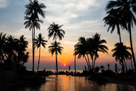 Beautiful tropical beach with palm trees silhouettes at dusk.