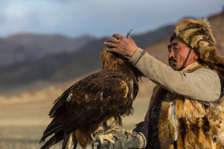 SAGSAY, MONGOLIA - SEP 28, 2017: Berkutchi (Kazakh Eagle Hunter) while hunting to the hare with a golden eagles on his arms in the mountains of Bayan-Olgii aimag. Editorial