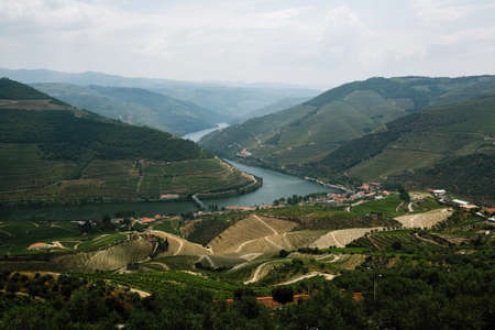 View of Douro valley and vineyards in the hills, Porto, Portugal. 写真素材