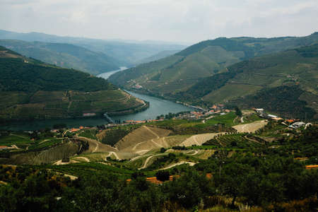 Top view of river in Douro valley and vineyards, Porto, Portugal.