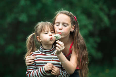 Sisters blowing dandelion seeds away in the meadow at summer. Stockfoto