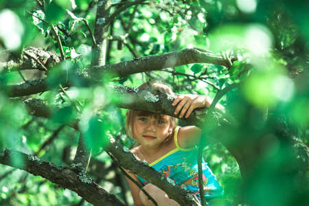 A little girl is sitting in the green branches of an Apple tree.