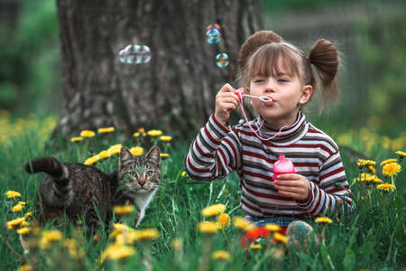 Little girl playing with a cat in the green grass. Stockfoto